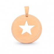 Stainless steel charms round 12mm star Mix&Match Rose Gold